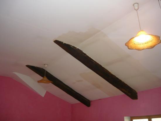 Etat d'origine du plafond - cigarettes/infiltration..